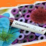 Коронавірус: чи можлива пандемія?