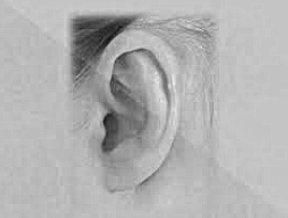 Чисті та здорові вуха: 7 порад як діяти для дотримання